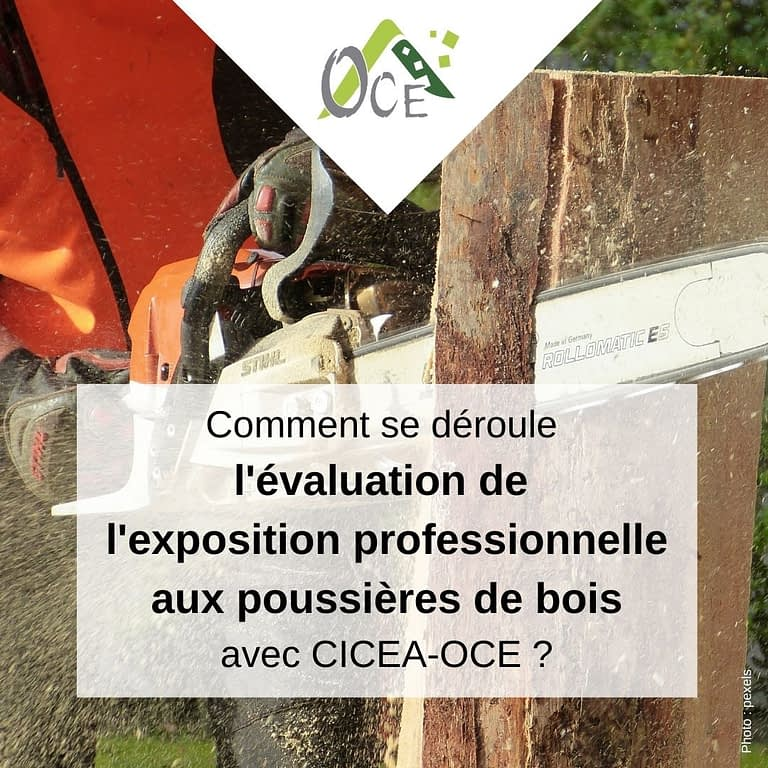Evaluation de l'exposition professionnelle aux poussières de bois-0
