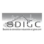 Société de Démolition Industrielle et Génie Civil Ouest Contrôle Environnement Amiante Prélèvement Analyse Désamiantage