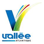 Valee Atlantique Ouest Contrôle Environnement Amiante Prélèvement Analyse Désamiantage